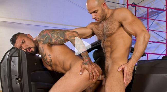 rearstable auto erotic